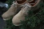 Pointer Footwear Willard Shoes-1